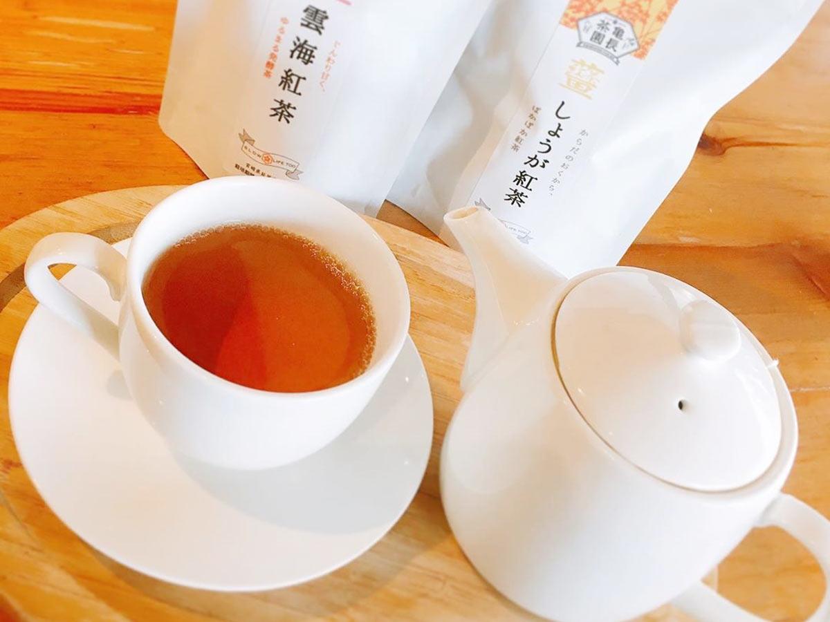 亀長茶園雲海紅茶